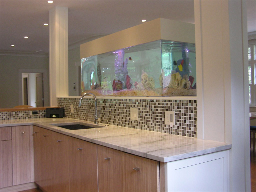 Kitchen Sink Area With Custom Salt Water Fish Tank